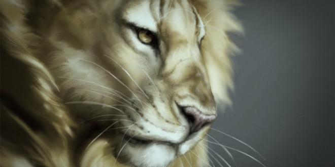 что лучше дарить мужчине льву