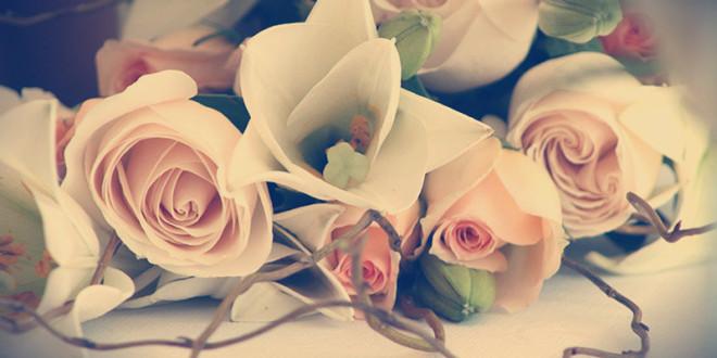 какие цветы какому знаку зодиака