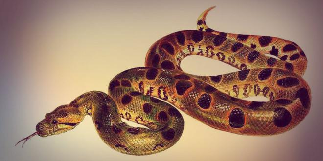 гороскоп 2016 для змеи