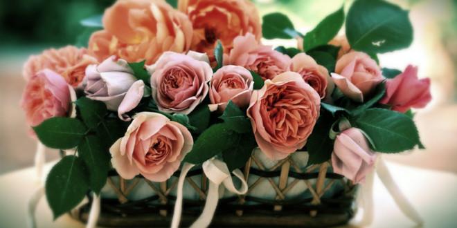 какие цветы подарить маме на 60 лет
