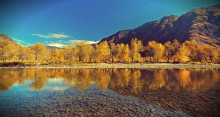 отдых на горном алтае осенью 2015