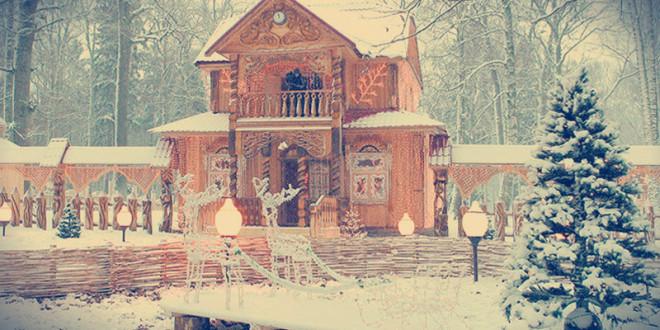 белоруссия беловежская пуща отдых зимой 2016
