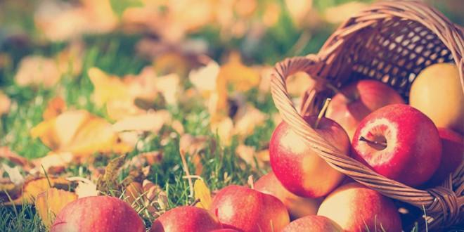 приметы и поверья на яблочный спас