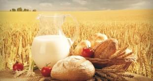 день сельского хозяйства в беларуси