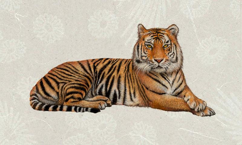 Что пожелать своими словами на Новый 2022 год Тигра?